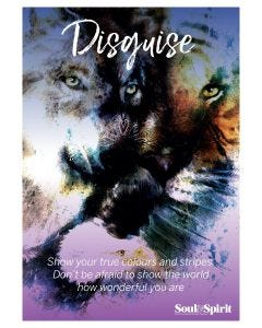 Disguise Poster