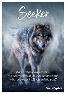 Seeker Poster