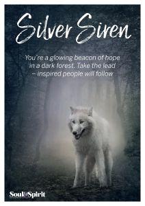 Silver Siren Poster
